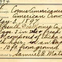 Samuel B. Matson, egg card # 081u