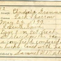 Samuel B. Matson, egg card # 039