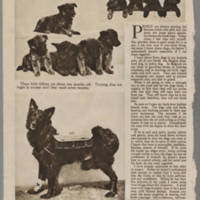 """The American Magazine: """"The Hottest Four Hours I Ever Went Through"""" by Floyd Gibbons - Page 4"""