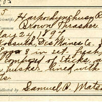 Samuel B. Matson, egg card # 102u