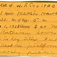 William F. Coultas, egg card # 003