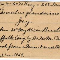 Clinton Mellen Jones, egg card # 811