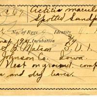 Samuel B. Matson, egg card # 003