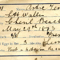 L H Wallis, egg card # lhw001