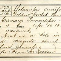 Thomas H Jackson, egg card # thj002u