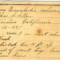 Charles A. Allen, egg card # 001