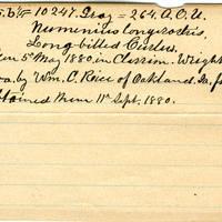 Clinton Mellen Jones, egg card # 852