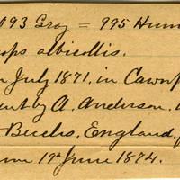 Clinton Mellen Jones, egg card # 554