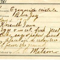Samuel B. Matson, egg card # 008