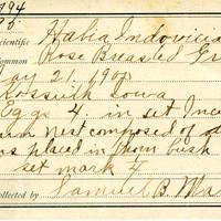 Samuel B. Matson, egg card # 094u