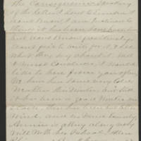1875-01-29 Page 4
