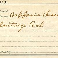 Samuel B. Matson, egg card # 066u