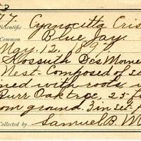 Samuel B. Matson, egg card # 078u