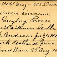 Clinton Mellen Jones, egg card # 607
