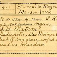Samuel B. Matson, egg card # 070u