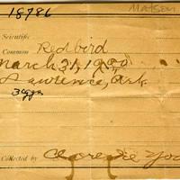 Samuel B. Matson, egg card # 064u