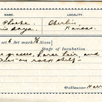 Harry L Heaton, egg card # hlh001u
