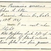 Charles A. Allen, egg card # 004