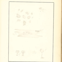 The Slime Moulds of Eastern Iowa by Minna Pryce Humphreys, 1891, Page 212