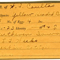 William F. Coultas, egg card # 025