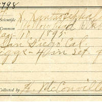 Samuel B. Matson, egg card # 082u