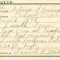 Samuel B. Matson, egg card # 083u