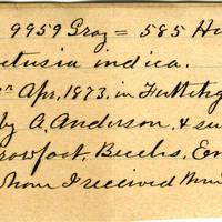 Clinton Mellen Jones, egg card # 540