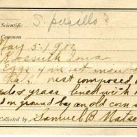 Samuel B. Matson, egg card # 002