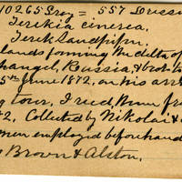 Clinton Mellen Jones, egg card # 509