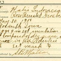 Samuel B. Matson, egg card # 095u