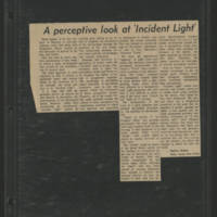 """""""""""A perceptive look at 'Incident Light'"""""""" by Shelley Shakas"""
