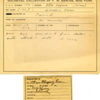 Thomas Wilmer Dewing, egg card # 129