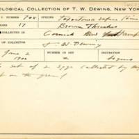 Thomas Wilmer Dewing, egg card # 809u