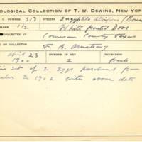 Thomas Wilmer Dewing, egg card # 207