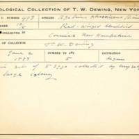Thomas Wilmer Dewing, egg card # 677u