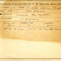 Thomas Wilmer Dewing, egg card # 501