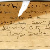 William F. Coultas, egg card # 007