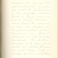 The fertilizing cell, its varying form and behavior by Nelly Peery, 1890, Page 44