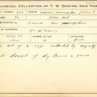 Thomas Wilmer Dewing, egg card # 782u