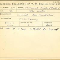 Thomas Wilmer Dewing, egg card # 752u