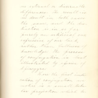 The fertilizing cell, its varying form and behavior by Nelly Peery, 1890, Page 4