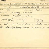 Thomas Wilmer Dewing, egg card # 626u