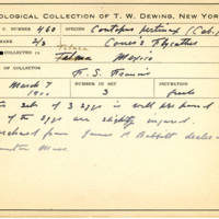 Thomas Wilmer Dewing, egg card # 357