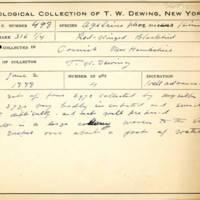Thomas Wilmer Dewing, egg card # 674u