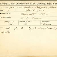 Thomas Wilmer Dewing, egg card # 796u