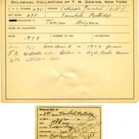 Thomas Wilmer Dewing, egg card # 194