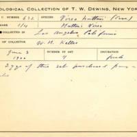 Thomas Wilmer Dewing, egg card # 511