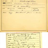 Thomas Wilmer Dewing, egg card # 768u