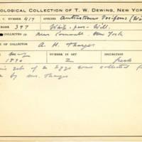 Thomas Wilmer Dewing, egg card # 310