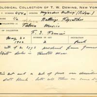 Thomas Wilmer Dewing, egg card # 660u